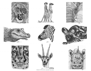 Animals-of-Africa